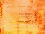 Leonardo: The spine c.1510-11, flipped